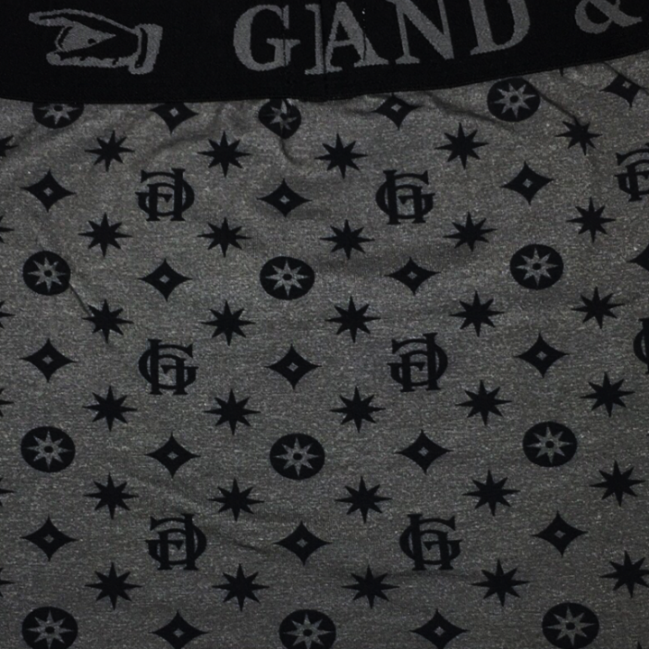GH FAMILY CREST – BOXERS / GRYの商品画像4
